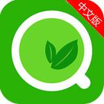 绿茶手机浏览器