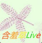 含羞草live直播盒子