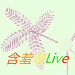 含羞草live