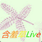 含羞草live直播