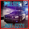 警方停车碰撞试验