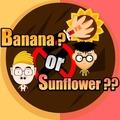 香蕉还是太阳花