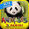 动物2013