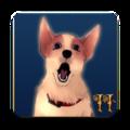 小狗克洛伊的冒险2