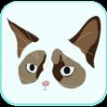 CatDog安卓手机版