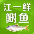 江一鲜鲥鱼手机版