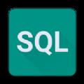 SQL大师手机版