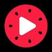 西瓜视频百万英雄