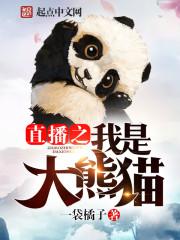 直播之我是大熊猫