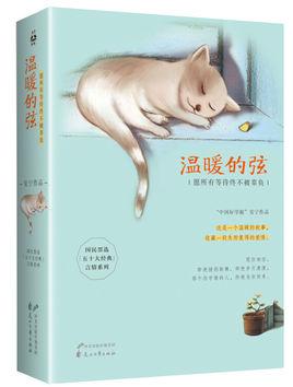 温暖的弦小说免费阅读完整版