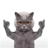 抖音蓝猫biubiu表情包