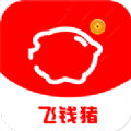 飞钱猪贷款-手机软件下载