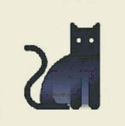 夜猫云播vip破解版
