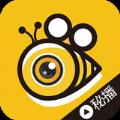蜂蜜live直播平台