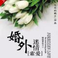 索爱:婚外迷情小说