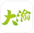 大渝-手机软件下载