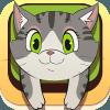KittyHome