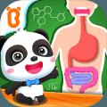 奇妙的身体冒险-人体消化系统认知-宝宝巴士