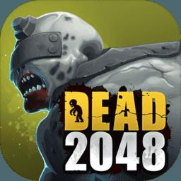 DEAD2048