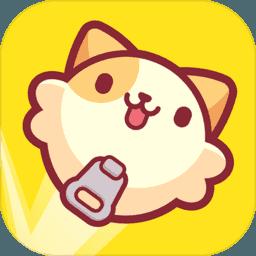 皮皮猫                            -手机网游
