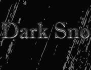 黑暗的雪 中文版