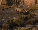 七日杀:饥荒 整合版-动作游戏