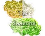 人生的旅程:四季 中文版