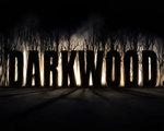 阴暗森林2 中文版