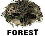 森林v0.39 英文版