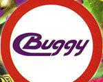 Buggy 英文版