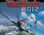 空战英雄2012 硬盘版