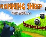 奔跑的绵羊:小世界 硬盘版