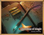 魔法守护者:阿曼达的觉醒 英文版