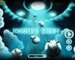 小羊快跑 硬盘版