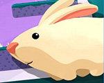 兔子全集图片_【贪婪的兔子】_贪婪的兔子下载_贪婪的兔子全集下载