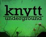尼特的故事:地下探险 英文版