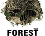 森林v0.37 英文版