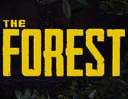 森林 中文版0.46c