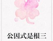 公因式是根三:学霸联盟篇 中文版