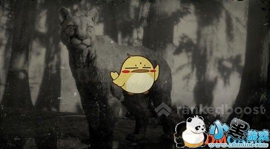 《荒野大镖客2》全动物图鉴一览