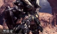 《怪物猎人:世界》冰原dlc大师等级防具-黑角龙男装视频分享