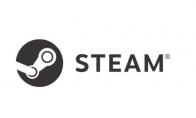 steamworks什么意思