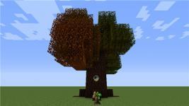 我的世界暮色森林时光树介绍 暮色森林时光树图鉴