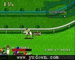 塞马大亨 2 (Stakes Winner 2)