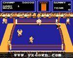 大职业摔角 (The Big Pro Wrestling!) -街机游戏