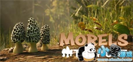 《羊肚菌:狩猎 Morels: The Hunt》中文版百度云迅雷下载