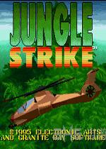 MD丛林风暴-主机游戏