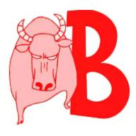 牛掰直播盒子
