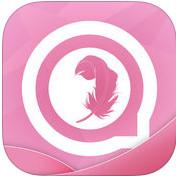 吃鸡老湿视频全集-手机软件下载