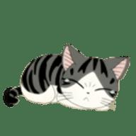小猫咪聚合直播